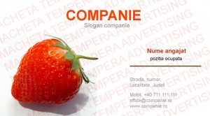 carti de vizita importator fructe